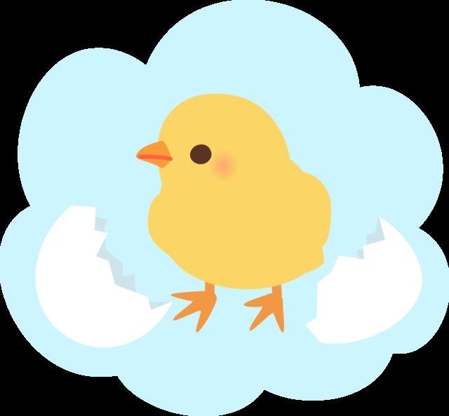 孵化補助(Assisted Hatching)について